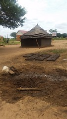 20180317_122336 (FAO Forestry) Tags: fao un uganda refugees unhcr world bank environment energy south sudan woodfuel forestry