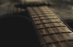 P4140033 The Two Strings (mukherjee_ab) Tags: guitar music