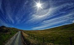 west coast tauranga bay 12 (Bilderschreiber) Tags: tauranga bay bucht westcoast west coast neuseeland newzealand southisland südinsel sun sonne weitwinkel wideangle wide angle sky fisheye way weg