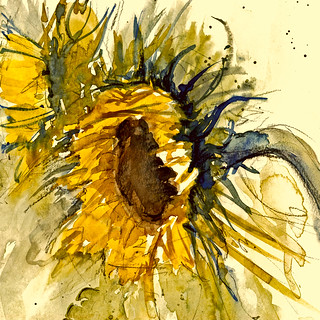 .. sun and flowers ... !