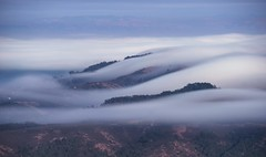 Endless flow of fog (PeterThoeny) Tags: mttamalpais california millvalley photowalk sea fog seaoffog cloud cloudy outdoor mountain hill landscape day ndfilter nd1000 sony a6000 sel55210 1xp raw photomatix hdr qualityhdr qualityhdrphotography mist forest fav200