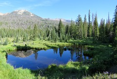 A Quiet Morning on the West Side (Patricia Henschen) Tags: colorado grandlake rockymountainnationalpark rocky mountains mountain nationalpark western slope trees trailridgeroad scenicbyway pond beaver ponds picnic area clouds forest kawuneechevalley reflection
