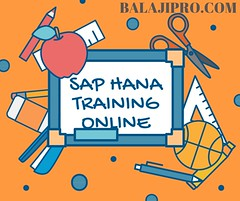SAP HANA TRAINING ONLINE (tapan.mallick15) Tags: sap saphana freelivedemo sapprofessional bestonline