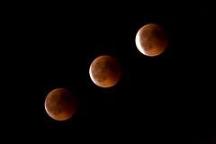 IMG_6355 Eclipse, Mallorca (Fernando Sa Rapita) Tags: baleares canon eos6d mallorca sarapita tamron tamron150600 cielo eclipse eclipsetotal luna moon night noche sky teleobjetivo bloodmoon lunadesangre canoneos