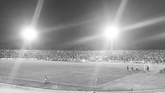 É Galo Doido (KyllerCG) Tags: américadosul brasil brazil campinagrande catolé ernanisátyrostadium estádiogovernadorernanisátyro futebol galo maioral oamigão paraíba southamerica treze trezefc blackandwhite cidadesnordestinas esportes football soccer sports