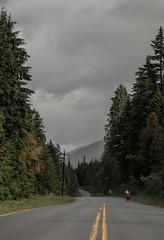 IMG_7294-1 (Rémi26) Tags: bike velo route road jaune canada sapin