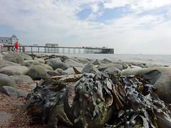 Penarth Pier (Dun.can) Tags: penarthpier penarth pier wales summer sea seaside lowpov pebblebeach beach seaweed