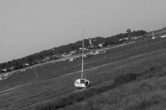 Mal de mer N&B - Seasickness N & B (CoradoAD) Tags: aquitaine arcachon bassindarcachon europe france landscapes maritime natureandlandscapes natureetpaysages paysages transports bateaux décalé horizon