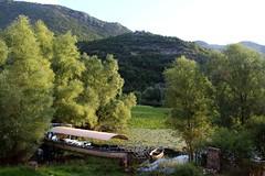 desolate (Ir. Drager) Tags: nature landscape montenegro nationalpark park green skadarskojezero abadoned rijekacrnojevića river boat rijeka