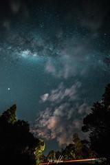 DSC00116 (SunThroughEyelids) Tags: night nature north newzealand nz nightsky stars sky skyline travelling traveller art aqua sony light pretty photograph adventure awesome amazing a7ii auckland landscape makro niftyfew