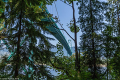 Under the bridge Vancouver.jpg (jamiepacker99) Tags: 2018 whistler bc july canada canoneos6d canonef1635mmf28liiusmlens summer vancouver stanleypark lionsgatebridge bridge trees view landscape framed