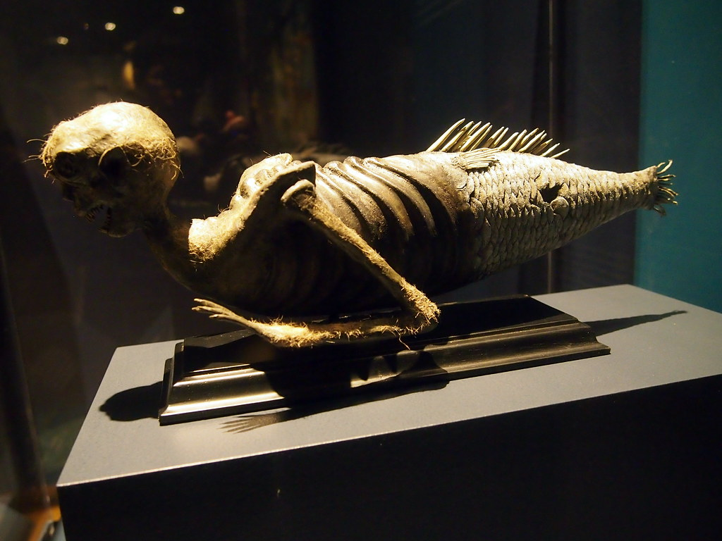 The World S Most Recently Posted Photos Of Fiji And Mermaid