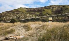 The Road Down (David Recht) Tags: newzealand oceanbeach railing fence tower hawkesbay