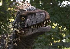 Doc, I think we went too far (J0.A) Tags: pairadaiza brugelette dinosaure dinosaur utharaptor