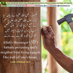 forbade-preventing-ones-neighbor-from-fixing-a-peg (aamirnehal) Tags: quran hadees hadith seerat prophet jesus moses book aamir nehal love peace quotes allah muhammad islam zakat hajj flower gift sin virtue punish punishment teaching brotherhood parents respect equality knowledge verse day judgement muslim majah dawud iman deen about son daughter brother sister hadithabout quranabout islamabout riba toheed namaz roza islamic sayings dua supplications invoke tooba forgive forgiveness mother father pray prayer tableegh jihad recite scholar bukhari tirmadhi