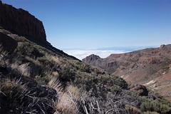 Guajara ascent (Riverman___) Tags: tenerife spain hiking mountain volcano teide guajara flower sky tajinaste summit camino de teresme barranco del infierno