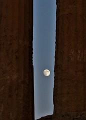 Valle dei Templi (Angelo Petrozza) Tags: valle dei templi agrigento agrakas girgento sicilia sicily moon concordia giunone temple tempio angelopetrozza hd35mmmacrolimited