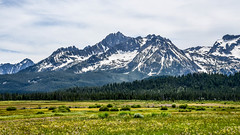 Rise up (maytag97) Tags: maytag97 nikon d750 sawtooth mountains range idaho rugged summer landscape blue sky mountain grass forest snow tree field wood