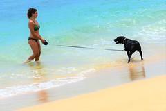 Walking the dog (thomasgorman1) Tags: makaha oahu nikon leash woman bikini candid shore tide dog island