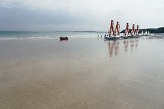 Beach Life 4
