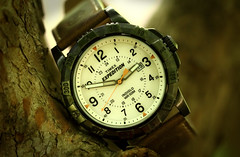 Timex, Expedition. 5 (EOS) (Mega-Magpie) Tags: canon eos 60d outdoors time timepiece field watch wristwatch timex expedition quartz tree branch indigio