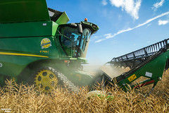 Colza Harvest | 2019 JOHN DEERE S785i Combine Harvester (martin_king.photo) Tags: harvest harvest2018 ernte 2018harvestseason combineharvester harvesttime summer work tschechischerepublik powerfull martinkingphoto machines strong agricultural greatday great czechrepublic welovefarming agriculturalmachinery farm day working modernagriculture landwirtschaft moisson machine machinery farmworld farmlife tschechische republik power dynastyphotography lukaskralphotocz fans place clouds blue yellow gold golden eos country lens rural camera outdoors outdoor colza rape raps canola cloudy sky photo canon combine harvester allnew brandnew new neu soucytracs tracs view tree