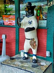 Hendersonville Bears 7 - NY Yankee Bear (David441491) Tags: bear statue artwork sculpture baseball nyyankees newyorkyankees bearfootin'publicartwalk