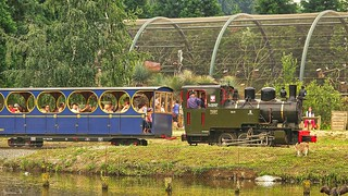 Old Train - 5710