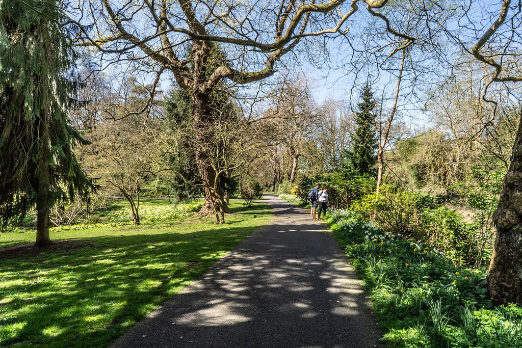 VISIT TO THE NATIONAL BOTANICAL GARDENS [GLASNEVIN DUBLIN]-138586