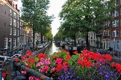 De Kees de Jongenbrug (Jainbow) Tags: amsterdam jainbow flowers canal bloemgracht keesdejongenbrug jordaan