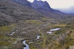 Valle de Frailejones (Tato Avila) Tags: colombia colores cálido cielos campo montañas naturaleza nikon nubes boyacá nevadodelcocuy frailejon agua vida vegetal colombiamundomágico