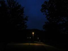 deep blue of twilight (october blue) Tags: path twilight blue