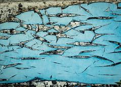 Danse des Baleines (Katrina Wright) Tags: dsc1373 abstract paint peelingpaint decay damage wood chippedpaint mold blue