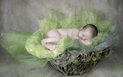 Leni (yo_hermans) Tags: inspiredbylove baby basket