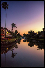 Venice Canals, Venice, California. (drpeterrath) Tags: landscape seascape color outdoorbluehour sunset outdoor bluehour canon eos5dsr 5dsr reflection palm tree water