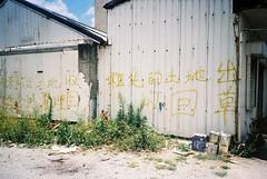 (埃德溫 ourutopia) Tags: film kodak ultramax ultramax400 kodak400 canon canonprima canonprimaas1 filmphotography analog analogphotography house wall yard handwriting graffiti words sunshine lanyu ponsonotao orchidisland フィルム 蘭嶼