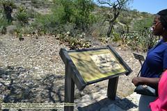 062518-019 (leafworks) Tags: chroniclesofsiroisinleaf newmexico carlsbad carlsbadcavernsnationalpark caves caverns coloradosprings co usa 01