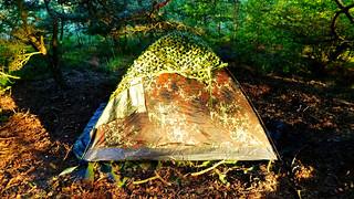 Tent At Sunrise Light