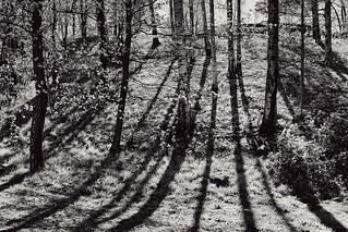 Slope Shadows