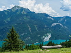 Walks on Zwoelferhorn-E7050090 (tony.rummery) Tags: austria bench em10 lake landscape mft microfourthirds mountain omd olympus schafberg stgilgen tree zwoelferhorn laim salzburg at