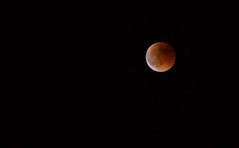 Eclipse da Lua (SandraFotosPortfolio) Tags: eclipsedalualisboa luacheia eclipselunar moon 2018 lunar eclipse lisbon july super longest 21st century total blood luna roja