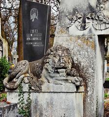 20110413 Watchful lion ([Ananabanana]) Tags: nikon d40 gimp photoscape 1855mm 1855 nikkor nikon1855mmkitlens nikkorafsdx1855mm nikonafsdx1855mm nikkor1855mm nikon1855mm nikonistas nikonista lviv lvov lemberg lemburg ukraine ukrainian lychakiv cemetery личаківськийцвинтар личаківський цвинтар lychakivs'kyitsvyntar lychakivs'kyi tsvyntar cmentarzłyczakowskiwelwowie державнийісторикокультурниймузейзаповідник лича́ківськийцви́нтар grave gravestone gravestones mauseleum necropolis statues statue lion lions leo flickrexplored explore explored чернівці україна lionsoflviv leopolis львів