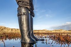 Gummistiefel an der Nordsee (Anton Stiefel) Tags: nordsee northsea nord see north sea gummistiefel gummi stiefel rubberboots rubber boots hunter black schwarz wellies norris field