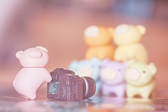 214/365 : Group Photo (♥GreenTea♥) Tags: pig eraser pigeraser pigs erasers pigerasers bluepig pinkpig purplepig greenpig orangepig yellowpig blue pink purple green orange yellow iwako iwakoeraser iwakoerasers イワコー t1i canon canont1i canont1irebel canonrebel eos canoneosrebelt1i ef100mmf28macrousm canonef100mmf28macro hdr googlenikcollection nikcollection colorefexpro viveza hdrefexpro 365 photoaday pictureaday project365 365toyproject oneobject oneobject365daysproject 365the2018edition 3652018 miniaturecamera day214365 365day214 day214 project365214 02august18 project36508022018 08022018 odc ourdailychallenge friendship odcfriendship ourdailychallengefriendship