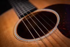 212/365 : Strings