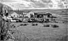 Lingy Hill . (wayman2011) Tags: fujifilm23mmf2 lightroomfujifilmxpro1 wayman2011 bwlandscapes mono rural farms farmmachinery tractors pennines dales teesdale harwood countydurham uk