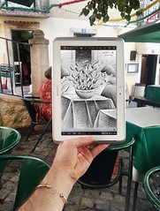 Project with Samsung Note in Lisbon (Ben Heine) Tags: pencilvscamera with tablet lisbon samsung samsungnote portugal improvisation project drawing hand fish benheineart restaurant sketch