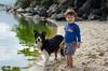 Diego e Lara (mcvmjr1971) Tags: trilhandocomdidi 2018 50mmf18d d7000 itaipu praiadeitaipu beach bolinha bordercollie brincando cachorras cachorro correndo dog lagoa mmoraes nikon niterói