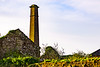 old victorian chimney (billdsym) Tags: annan scotland victorian chimney laundry