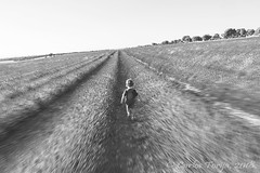 Into the lavender fields (Carlos Torija) Tags: lavender lavanda field fields campo monochrome bw monocromático monocromo girl kid little carlostorija brihuega spain guadalajara españa alcarria laalcarria landscape paisaje simetría simetry running correr beauty belleza youth juventud niñez childhood blury desenfoque movimiento movement speed velocidad cielo sky
